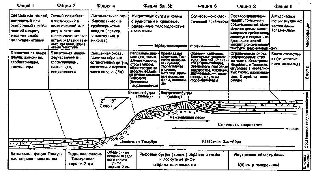 Рис. XI-З. Схема распределения