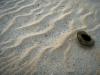 Мелкая эоловая рябь на пляже